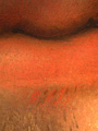 Micro 11. Detail of lips and stubble showing…