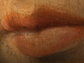 Micro 19. Detail of the lips, showing smooth…
