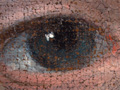 Micro 03. Detail of the boy's right eye (7.1…