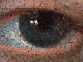 Micro 04. Detail of the boy's left eye (7.1 x…