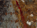 Micro 11. Detail of red lake glaze outlining…