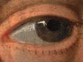 Micro 02. Detail of eye on the right (7.1 x m…
