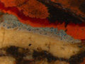 Micro 01. Blue priming beneath the carpet at…