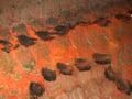 Micro 13. Detail of carpet, showing individua…