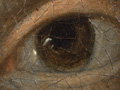 Micro 02. Detail of the eye on the right (7.1…