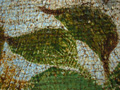 Micro 06. Detail of green foliage over the sk…