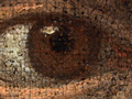 Micro 15. Detail of the eye on the left (7.1…