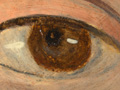 Micro 02. Detail of the eye on the right (7.…
