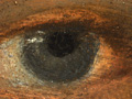 Micro 01. Detail of the eye on the left (7.1…