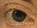 Micro 03. Fiennes's right eye.