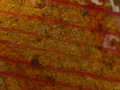 Micro 02. Detail of glazing over gold leaf on…