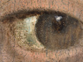 Micro 01. Detail of the eye on the left (7.1x…