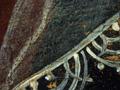 Micro 10. Detail of veil (7.1 x mag).