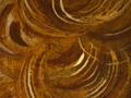 Micro 05. Detail of hair (7.1 x mag).