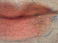 Micro 04. Detail of the lips, showing underdr…