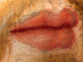 Micro 03. Lips (16 x mag).