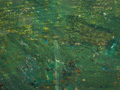 Micro 20. Detail of overpainted green curtain…