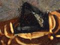 Micro 08. Detail of jewel on headdress (7.1 x…