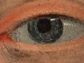 Micro 02. Detail of the eye on the right side…