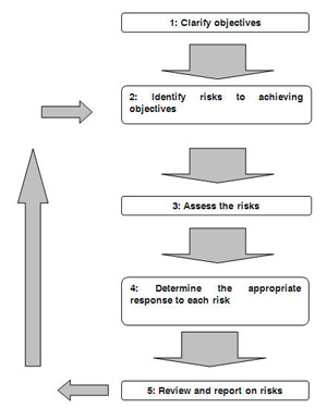 NPG Risk Management Framework