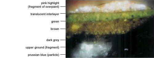 Magnified cross-section of paint layers in green tablecloth (photographed at x1000)