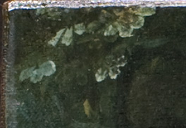 Detail of foliage in the top left corner of the painting