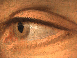 NPG 1727 Photomicrograph detail of the eye