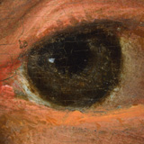 NPG4024 Detail of Sackville right eye