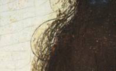 Detail, during cleaning, of hair